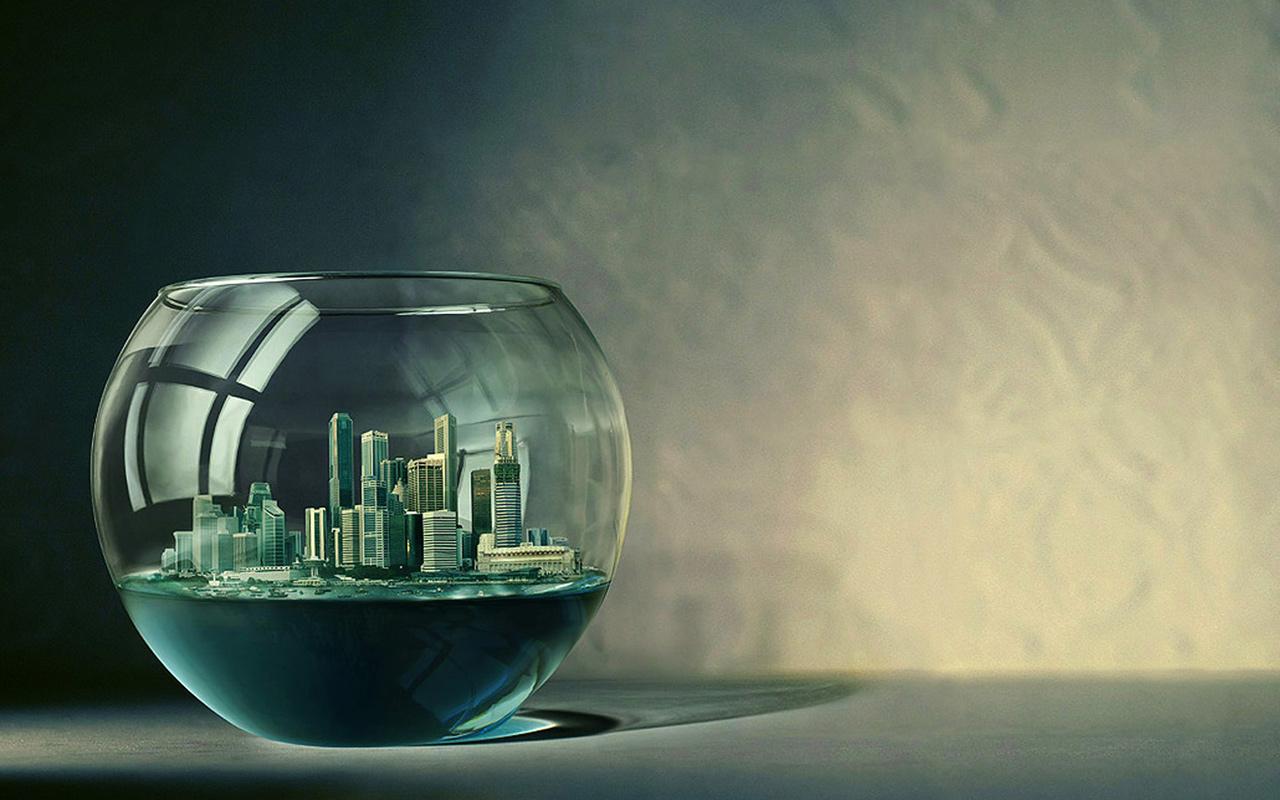 cityinfishbowl.jpg